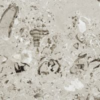 AURISINA-LUMACHELLA-Marmor